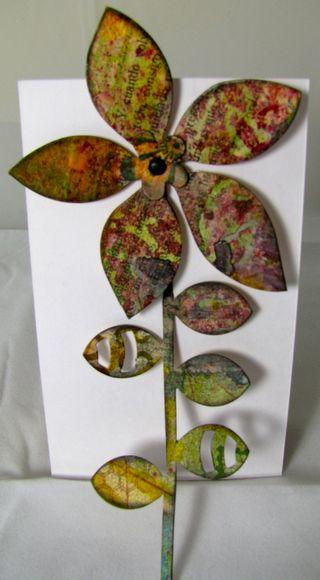 2012Jan3Rangerflower